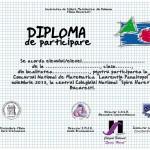 diploma de participare concurs 2013